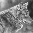 Wolf wildlife art by artbykarie-ann