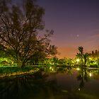 Pre-Dawn over the pond. by Rudi Venter