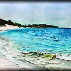 Horseshoe bay { Bermuda } by buddybetsy