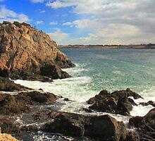Seacliffs in Jamestown Rhode Island by Roupen  Baker