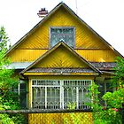 Unrefined Neon Yellow Dacha of Kartashevskaya by Mary-Elizabeth Kadlub