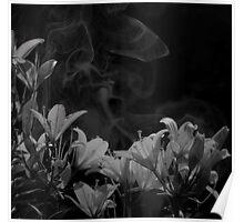 Twilight Flowers IV Poster