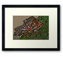 Nuffield A60 Tractor Framed Print