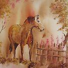 Brown Horse by ddonovan