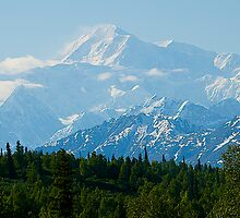 Denali, The High One, Mt McKinley,  Alaska, 2012. by johnrf