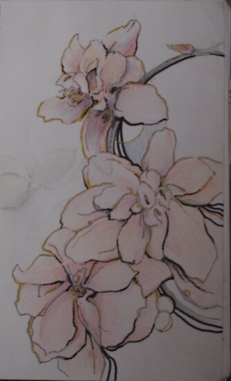floral sketch by Ellen Keagy