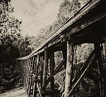 Noojee trestle bridge by Peter  Elgar