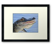 A gator with a smile! Framed Print