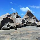 Remarkable Rocks  by Rebecca Koller