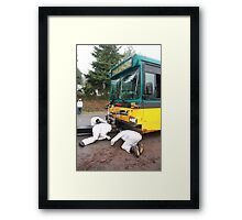 Fair Special Framed Print