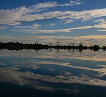 Reflections,Lake Bonney,Barmera,S.A. by elphonline
