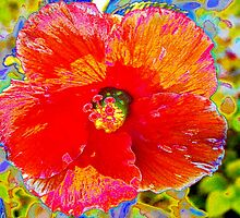 Crazy scarlet hibiscus by ♥⊱ B. Randi Bailey