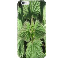 NETTLES STING BUT CAN TASTE GOOD TOO! iPhone Case/Skin