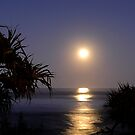 Coolum Moon Rise by Barbara Burkhardt