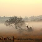 Sunrise by Taschja Hattingh