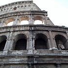Colosseum by Naomi  Dowdeswell