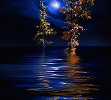 New Moon by Igor Zenin