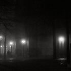 Foggy night in Arnhem by Pim Kops