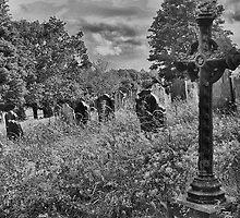 Gothic Graveyard by Dave Godden