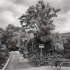Abcoude, Voordijk by Pim Kops