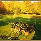 Wagon Wheels in an Autumn Field by Wayne King