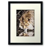 The Seeker II Framed Print