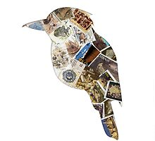 australian kookaburra stamp bird by creativemonsoon