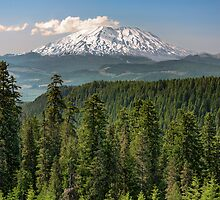 Mount Saint Helens from McClellan Overlook by Jim Stiles