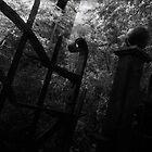 Cemetery Gates by gjameswyrick