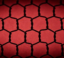 Blood Red Chicken Wire  by Writhe