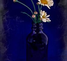 Bottled Daisies by Dianne English