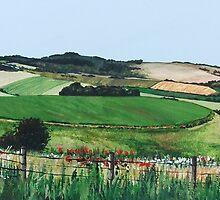 Patchwork Downs by Paula Oakley