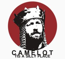Camelot, tis a silly place by Void-Manifest