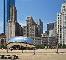 Millenium Park- Chicago 2012 by David Chesluk