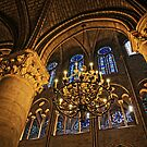 Inside the great gothic halls of Notre Dame by DavidONeill