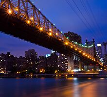 New York Ed Koch Queensboro Bridge at Night Too by Daisy Yeung