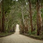 Old Country Road, Lal Lal, Victoria by Julie Begg