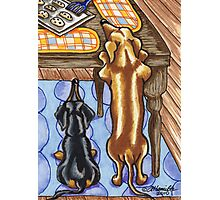Dachshunds want a Cookie Photographic Print
