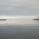 Morning View of Sequim Bay by YogiColleen