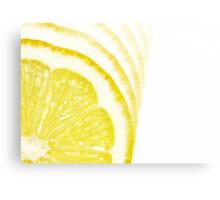 Slices of Citrus Canvas Print