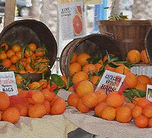 Still Life in Orange by Ellen Rosen Singer
