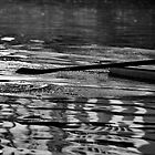 Ripples along the river by clickinhistory