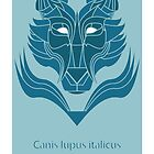 Canis lupus italicus by dom jack