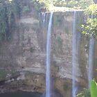 Falls  In The Bayawan Philippines by Kim Vaughn Sowards