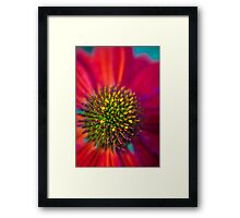 Rubbing noses with beautiful things makes me smile Framed Print
