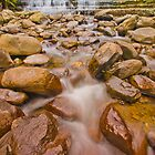 Below Liffey Falls by Neil