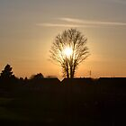 As the sun sets... by christof1395