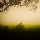 Evening mist  by Caroline Gorka