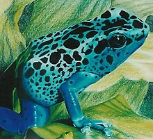 Blue Poison Dart Frog by BarbBarcikKeith
