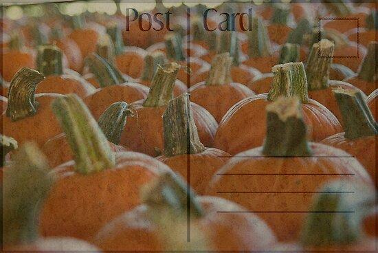 Postal Pumpkins by Angi Allen